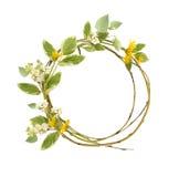 Πλαίσιο κύκλων από τους κλάδους και τα λουλούδια Στοκ Φωτογραφίες