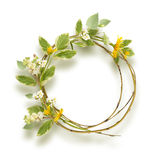 Πλαίσιο κύκλων από τους κλάδους, τα λουλούδια και τη χλόη Στοκ Εικόνες
