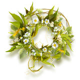 Πλαίσιο κύκλων από τους κλάδους, τα λουλούδια και τη χλόη Στοκ Εικόνα