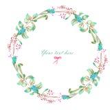 Πλαίσιο κύκλων, στεφάνι των floral στοιχείων watercolor ελεύθερη απεικόνιση δικαιώματος
