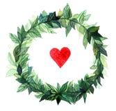 Πλαίσιο κύκλων στεφανιών Watercolor των καρυκευμάτων με τους πράσινους floral κλάδους και την κόκκινη καρδιά Στην άσπρη ανασκόπησ Στοκ φωτογραφίες με δικαίωμα ελεύθερης χρήσης