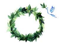 Πλαίσιο κύκλων στεφανιών Watercolor των καρυκευμάτων με τους πράσινους floral κλάδους στο άσπρο υπόβαθρο Στοκ Φωτογραφία
