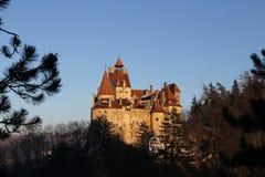 Πλαίσιο κλάδων του Castle πίτουρου Στοκ Φωτογραφία