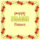 Πλαίσιο με τα κόκκινα λουλούδια και τα φύλλα παπαρουνών Floral υπόβαθρο ντεκόρ Στοκ Φωτογραφία