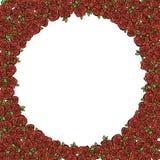 Πλαίσιο με τα κόκκινα τριαντάφυλλα Στοκ Εικόνες