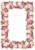 Πλαίσιο με τα ρόδινα και άσπρα εκλεκτής ποιότητας τριαντάφυλλα. ελεύθερη απεικόνιση δικαιώματος