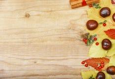 Πλαίσιο με τα φύλλα και τα κάστανα φθινοπώρου Στοκ Φωτογραφίες