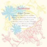 Πλαίσιο λουλουδιών υποβάθρου Ελεύθερη απεικόνιση δικαιώματος
