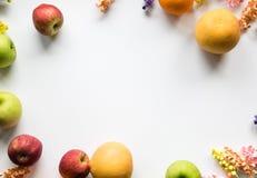 Πλαίσιο λουλουδιών φρούτων & εγγράφου Στοκ εικόνες με δικαίωμα ελεύθερης χρήσης