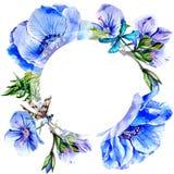 Πλαίσιο λουλουδιών anemone Wildflower σε ένα ύφος watercolor που απομονώνεται Στοκ εικόνες με δικαίωμα ελεύθερης χρήσης
