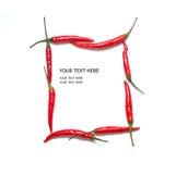 Πλαίσιο πιπεριών τσίλι Στοκ φωτογραφία με δικαίωμα ελεύθερης χρήσης