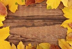 Πλαίσιο που αποτελείται από τα ζωηρόχρωμα φύλλα φθινοπώρου στο ξύλινο αγροτικό backgr Στοκ Φωτογραφίες