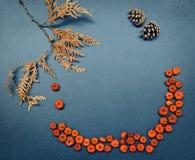 Πλαίσιο πτώσης φθινοπώρου, κολοκύθες, κώνοι, φύλλα Στοκ φωτογραφίες με δικαίωμα ελεύθερης χρήσης