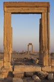 Πλαίσιο στηλών - Palmyra Στοκ φωτογραφία με δικαίωμα ελεύθερης χρήσης