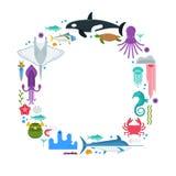 Πλαίσιο συνόρων ζωής θάλασσας Στοκ εικόνες με δικαίωμα ελεύθερης χρήσης