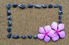 Πλαίσιο συνόρων με το αμμοχάλικο και το πορφυρό λουλούδι Στοκ εικόνες με δικαίωμα ελεύθερης χρήσης