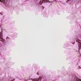 Πλαίσιο σχεδίου λουλουδιών - θέμα με τα ρόδινα λουλούδια Στοκ φωτογραφία με δικαίωμα ελεύθερης χρήσης