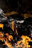 Πλαίσιο του καψίματος πυρκαγιάς σε χαρτί Στοκ Εικόνες