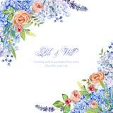 Πλαίσιο του μπλε hydrangea watercolor, lavender, ρόδινα τριαντάφυλλα Vintag απεικόνιση αποθεμάτων