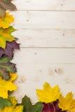 Πλαίσιο των ζωηρόχρωμων φύλλων φθινοπώρου κίτρινος, πράσινος και καφετής Στοκ φωτογραφίες με δικαίωμα ελεύθερης χρήσης
