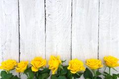 Πλαίσιο των κίτρινων τριαντάφυλλων στο άσπρο αγροτικό ξύλινο υπόβαθρο Valenti στοκ εικόνα