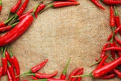Πλαίσιο των κόκκινων πιπεριών τσίλι - σειρά 2 Στοκ Φωτογραφία