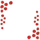 Πλαίσιο των κόκκινων πιπεριών Στοκ εικόνες με δικαίωμα ελεύθερης χρήσης