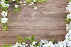 Πλαίσιο των λουλουδιών άνοιξη σε ένα ξύλινο υπόβαθρο Στοκ Φωτογραφίες