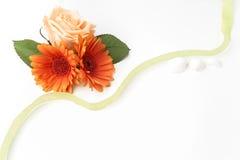 Πλαίσιο των λουλουδιών σε έναν άσπρο πίνακα, με το διάστημα για το κείμενο, θερινό θέμα Τοπ όψη Επίπεδος βάλτε Στοκ εικόνα με δικαίωμα ελεύθερης χρήσης
