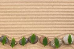 Πλαίσιο των πετρών με το πράσινο τρέκλισμα φύλλων στην κυματιστή άμμο Στοκ Φωτογραφίες