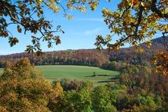 Πλαίσιο φθινοπώρου: δάσος και τομείς Στοκ εικόνα με δικαίωμα ελεύθερης χρήσης