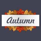 Πλαίσιο φθινοπώρου με τα ζωηρόχρωμα φύλλα με το διάστημα για το κείμενό σας Έμβλημα με το φύλλο σφενδάμου για την τυπωμένη ύλη ή  Στοκ Εικόνες