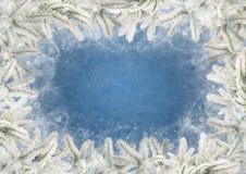 Πλαίσιο φιαγμένο από κλάδους έλατου που ντύνονται με τον παγετό σε ένα μπλε υπόβαθρο Στοκ εικόνα με δικαίωμα ελεύθερης χρήσης