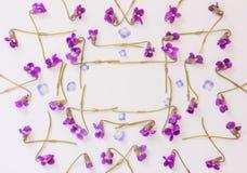 Πλαίσιο φιαγμένο από μικρά μπλε πέταλα και δασικές πορφυρές βιολέτες λουλουδιών σε ένα άσπρο υπόβαθρο με το διάστημα αντιγράφων Στοκ φωτογραφία με δικαίωμα ελεύθερης χρήσης