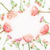 Πλαίσιο φιαγμένο από ρόδινους τριαντάφυλλα και οφθαλμούς στο άσπρο υπόβαθρο Επίπεδος βάλτε, τοπ άποψη λεπτομερές ανασκόπηση flora Στοκ Εικόνα