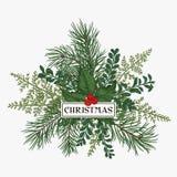 Πλαίσιο Χριστουγέννων με το πεύκο, τον ελαιόπρινο και τις φτέρες Στοκ φωτογραφία με δικαίωμα ελεύθερης χρήσης