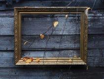 πλαίσιο χρυσό Στοκ εικόνες με δικαίωμα ελεύθερης χρήσης