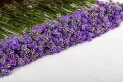 Πλαίσιο lavender σε ένα άσπρο ξύλινο υπόβαθρο στοκ εικόνα