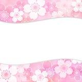 Πλαίσιο Sakura Στοκ Φωτογραφίες