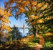 Πλαισιωμένος από τα χρυσά φύλλα Στοκ εικόνα με δικαίωμα ελεύθερης χρήσης
