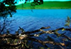 Πλαισιωμένο λίμνη υπόβαθρο της Νορβηγίας Στοκ Εικόνα