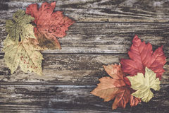 Πλαισιωμένο φθινόπωρο υπόβαθρο Στοκ Εικόνες