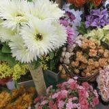 Πλαστά λουλούδια Στοκ Φωτογραφία