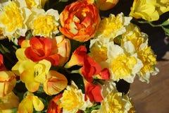 πλαστικά λουλούδια χρώματος Στοκ εικόνα με δικαίωμα ελεύθερης χρήσης