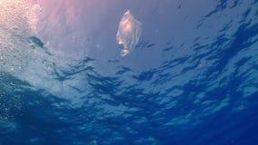 Πλαστική τσάντα που επιπλέει στον ωκεανό απόθεμα βίντεο