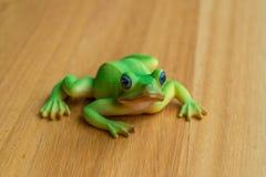 Πλαστικός βάτραχος Στοκ εικόνες με δικαίωμα ελεύθερης χρήσης