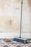 Πλαστικός παλαιός τοίχος ρύπου σκουπών Στοκ Φωτογραφίες
