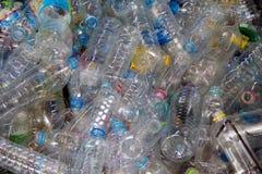 Πλαστικό κατοικίδιο ζώο ανακύκλωσης Στοκ Εικόνα