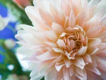 Πλαστικό λουλούδι Στοκ εικόνα με δικαίωμα ελεύθερης χρήσης