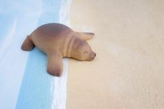 Πλαστικό παιχνίδι λιονταριών θάλασσας με τον αριθμό Στοκ εικόνες με δικαίωμα ελεύθερης χρήσης